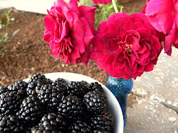 Roses & Blackberries