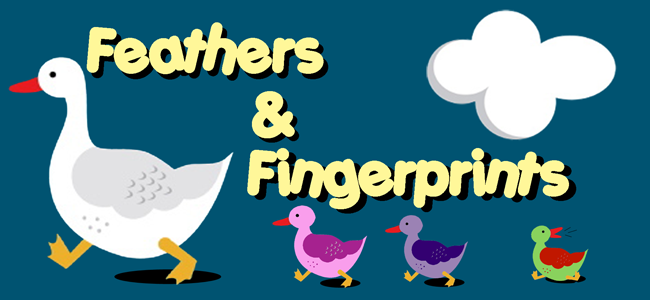 Feathers and Fingerprints