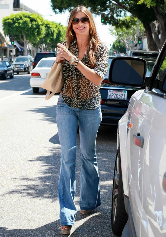 Sofia Vergara in Hollywood