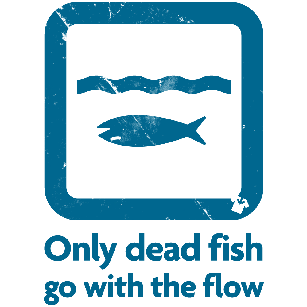 Through to the final for Only dead fish go with the flow