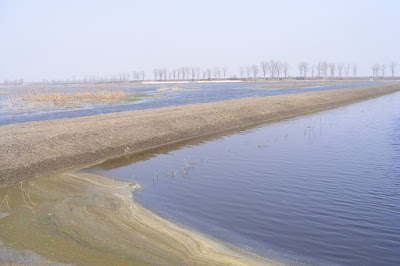 Delta Neajlovului, Parcul natural Comana, Giurgiu