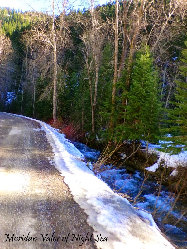 I went for a drive and what did I spy...icy blue winter river, evergreen trees and white snow. photo by Maridan Valor.