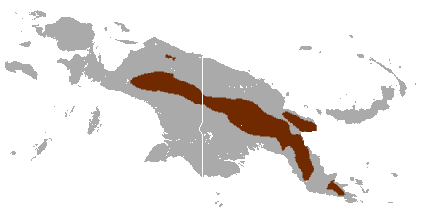 Eastern long-beaked echidna (Zaglossus bartoni) distribution