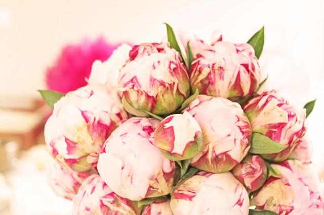http://amalielovesdenmark.blogspot.com