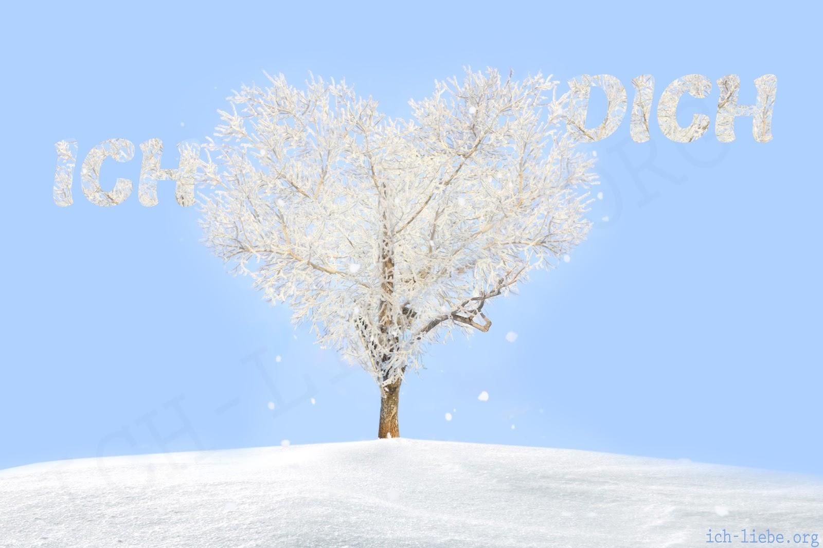 ich liebe dich, liebesbilder, herz, weiss, schnee, baum