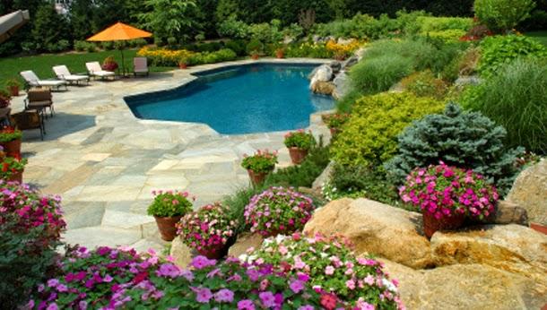 P tio das flores flores na piscina - Piscinas desmontables rigidas ...