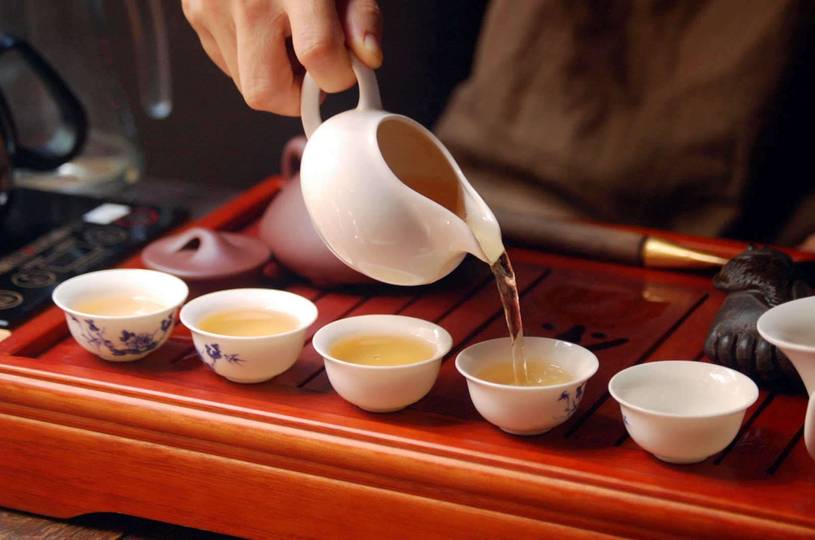 Chinese tea ceremony in chiang mai at sati the art of tea and yoga