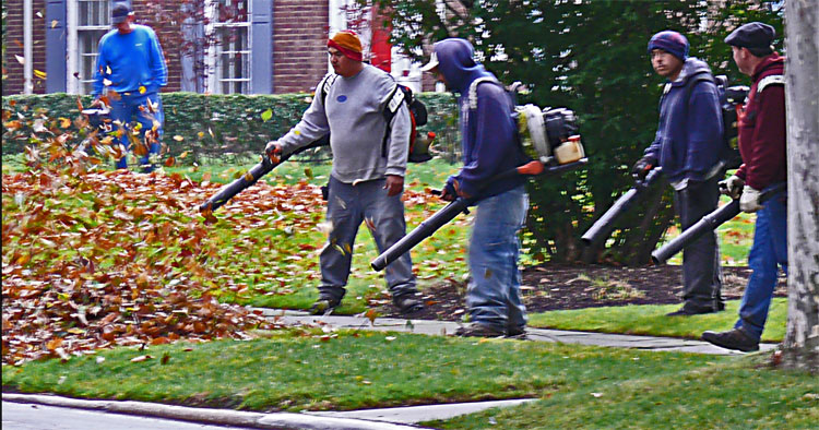Moments Later Raking It In A Quiet Leaf Blower