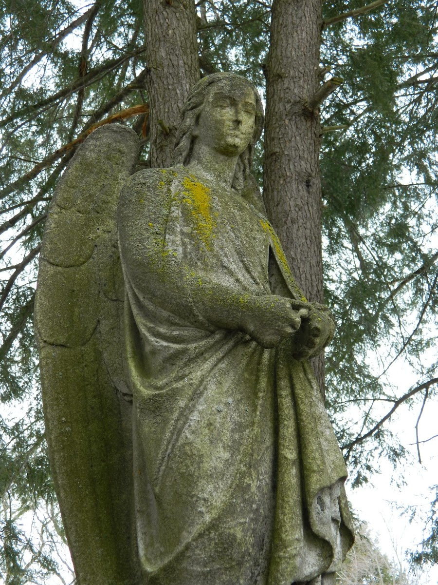 stone angel woodlawn cemetery elmira ny - weeping angels doctor who