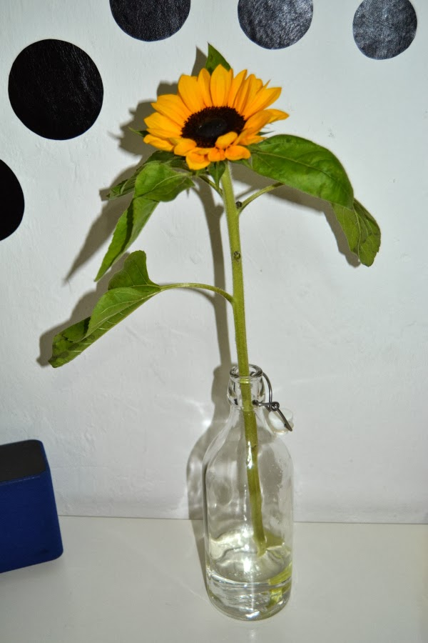 decoracion_hogar_home_deco_flores_blanco_negro_nudelolablog_17