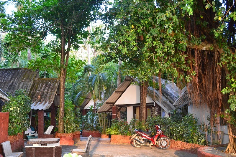 Krabi, Thailande, Pine bungalow