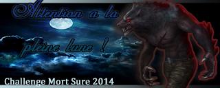 http://lesetageresdezebuline.blogspot.fr/2013/12/challenge-attention-la-pleine-lune-2014.html