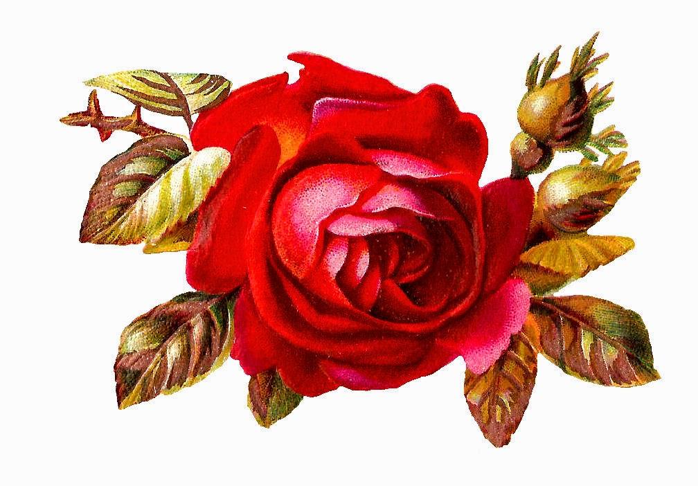 http://4.bp.blogspot.com/-dk3I4SreLAg/VLMdM4uV6UI/AAAAAAAAU70/D_zslwZ8eEE/s1600/scrap_red_rose_2bud_gm.jpg
