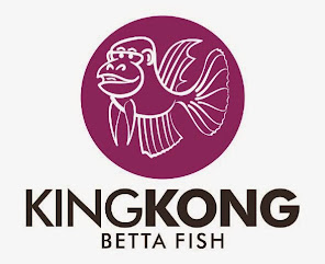 KING KONG BETTA FISH