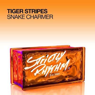 00 tiger stripes snake charmer web 2011 dgn Tiger Stripes Snake Charmer WEB 2011 DGN