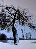 """Seeria """"Puud"""""""