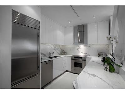 setai townhome kitchen