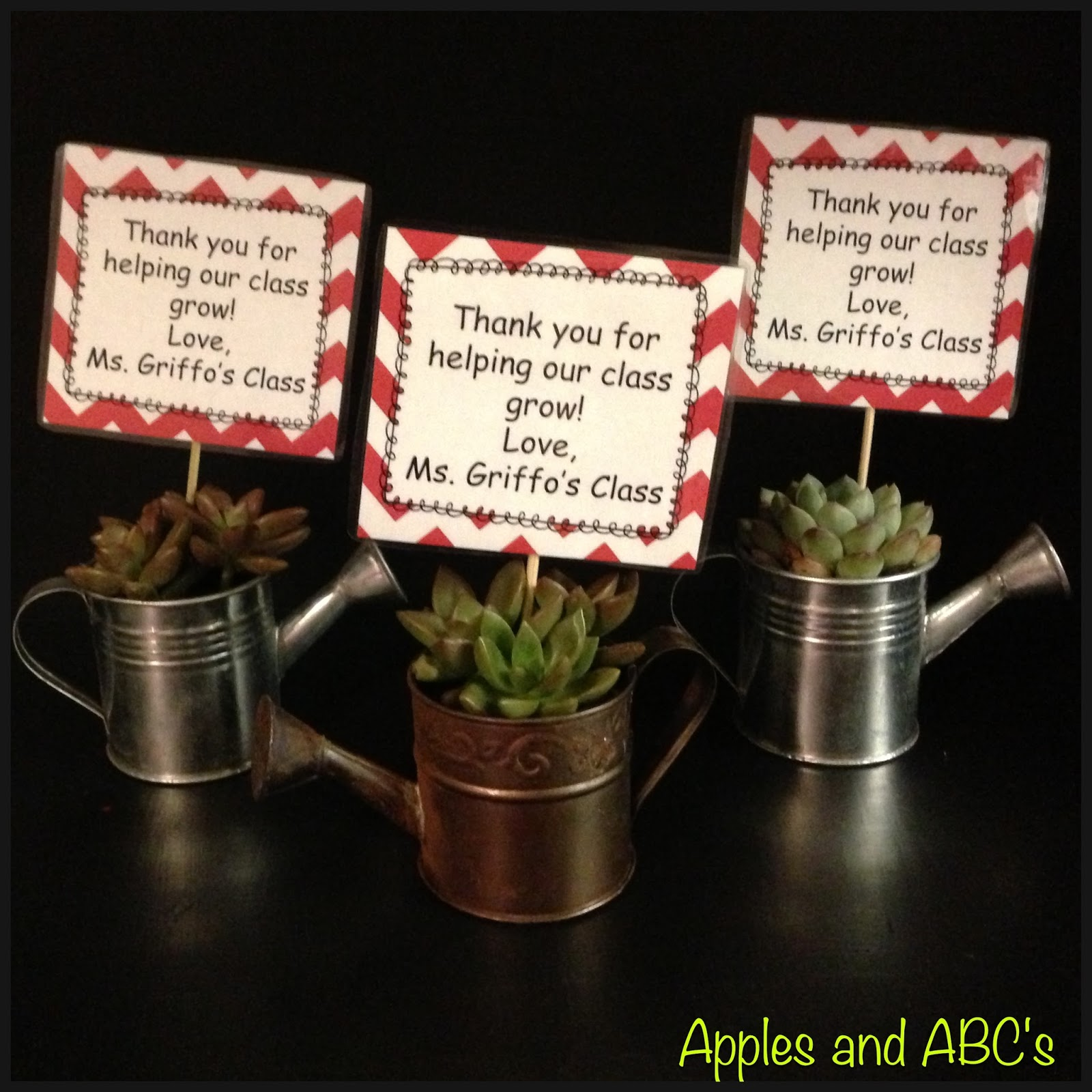 i am obsessed with succulents parent gift idea apples and abc s