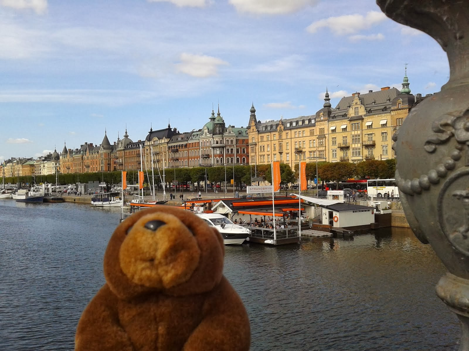 Teddy Bear in Stockholm