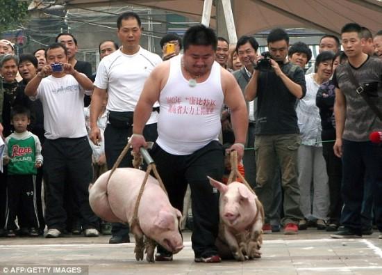 acara-angkat-babi