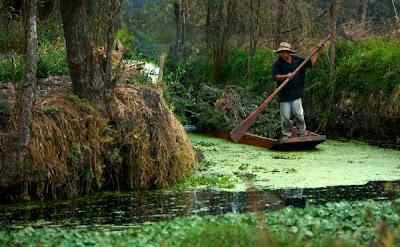 Pescador Lucero y Río de José A. Morales Partitura de Violonchelo e Instrumentos de Clave de Fa cómo Fagot, Trombón, Bombardino...Música Colombiana