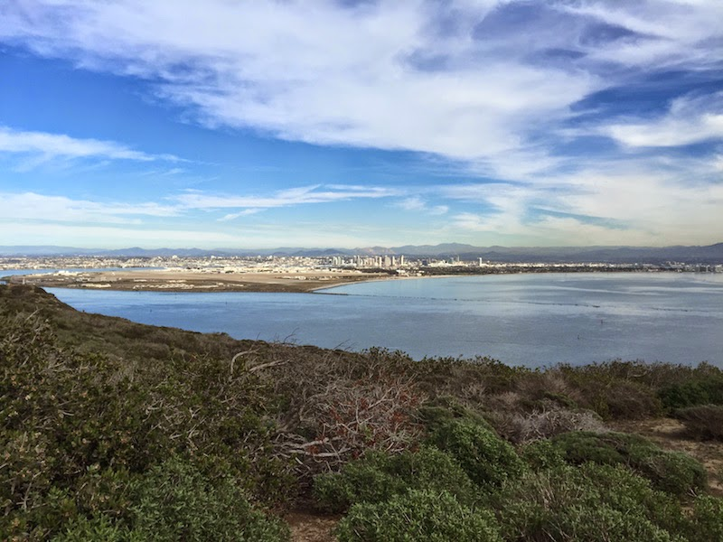 San Diego Bay as seen from Point Loma