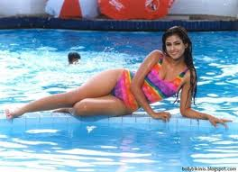 Simran hot south actress pics 5