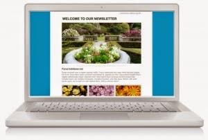 Sử dụng hình ảnh trong Email marketing