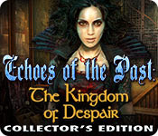 Echoes of the Past Kingdom of Despair Collectors