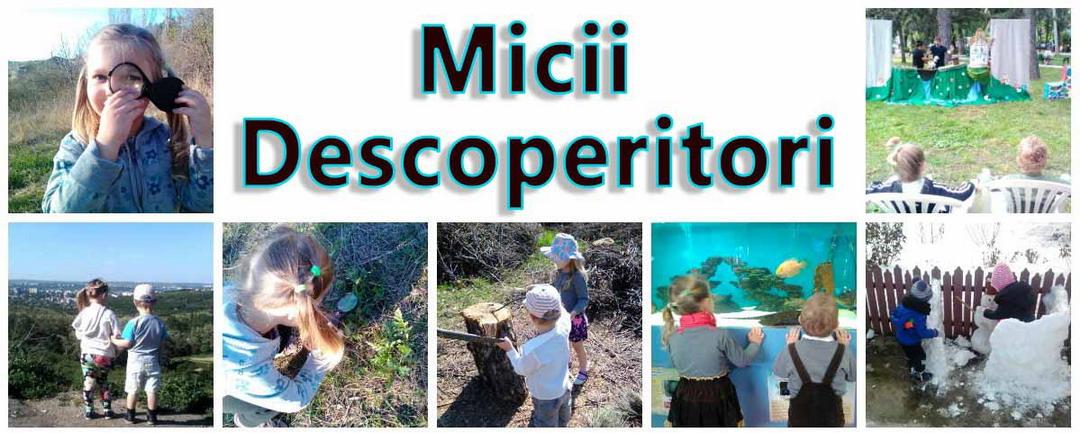 Micii Descoperitori