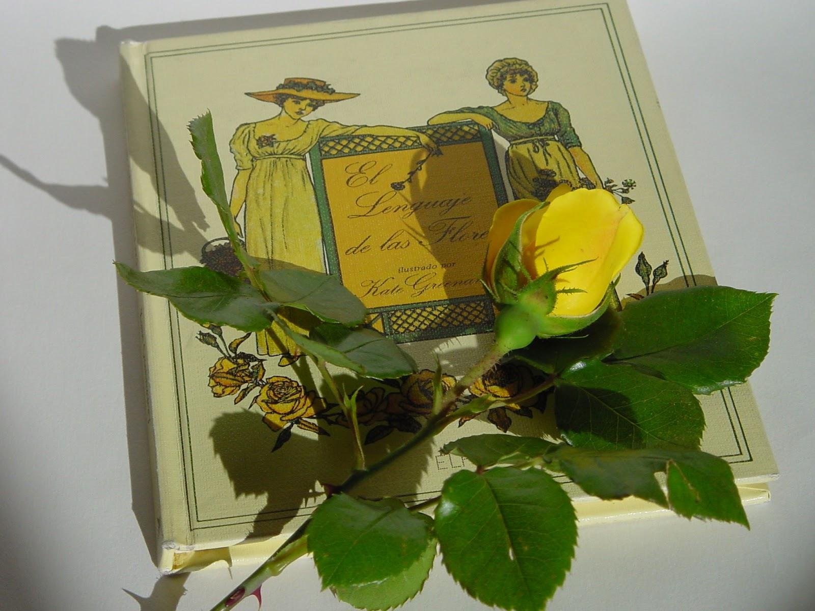 Jardineria eladio nonay feliz d a del libro jardiner a - Jardineria eladio nonay ...
