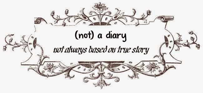 (not) a diary