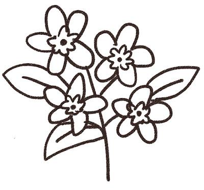 忘れな草のイラスト(花) モノクロ線画
