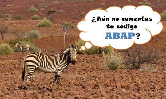 ¿Aún no comentas tu código ABAP?