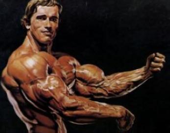 Arnold Schwarzenegger Body Size