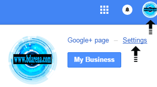 G+ page settings