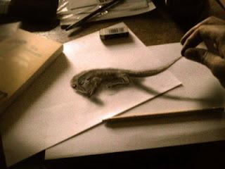 Gambar menggunakan Pensil yang nampak nyata