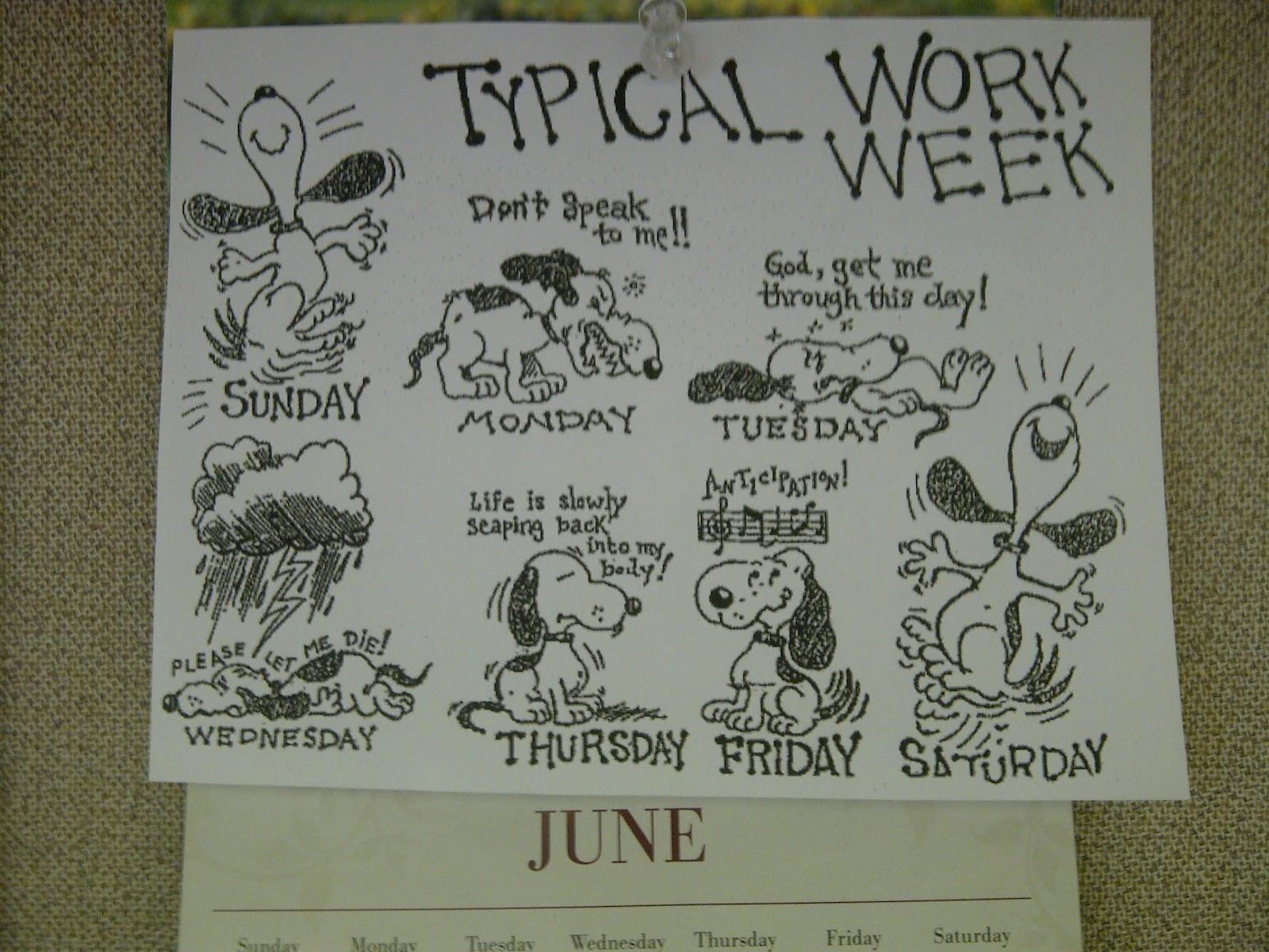 typical working week