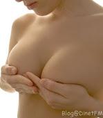 Inginkan breast seperti?