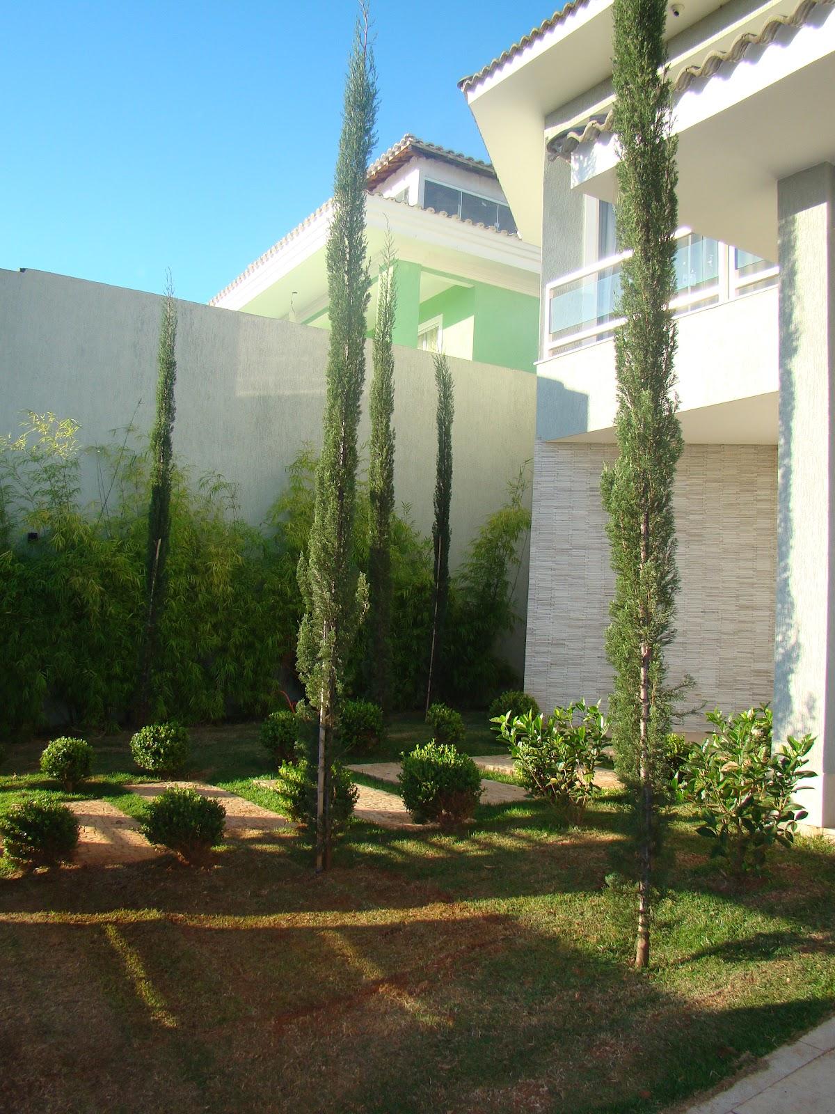 Casa & Flores Jardim  Escolha as plantas certas!