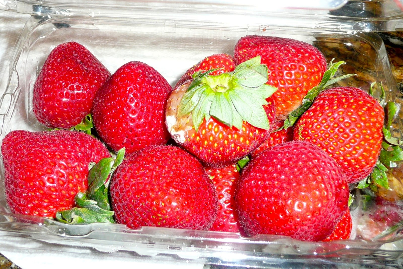 produce clerk the produce clerks handbook by rick chong bad quality moldy strawberries in a clamshell