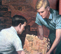 Hardy Boys -- retro and kitsch and ready to be upcycled