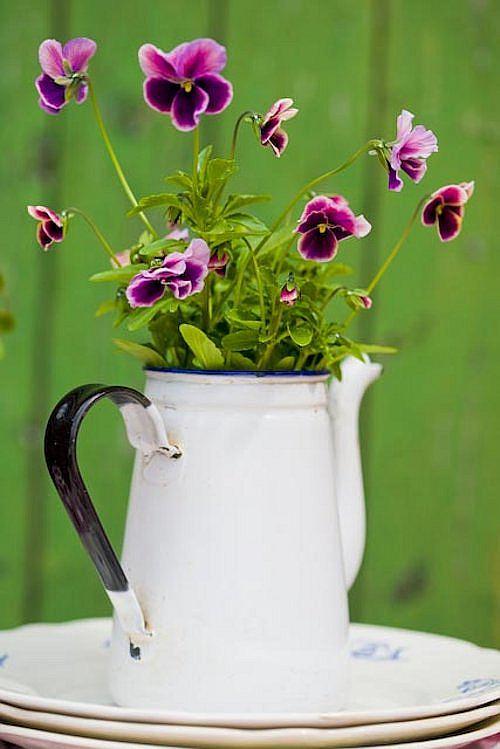 Mi baul vintage & chic. ideas para decorar.: vida en el jardin....