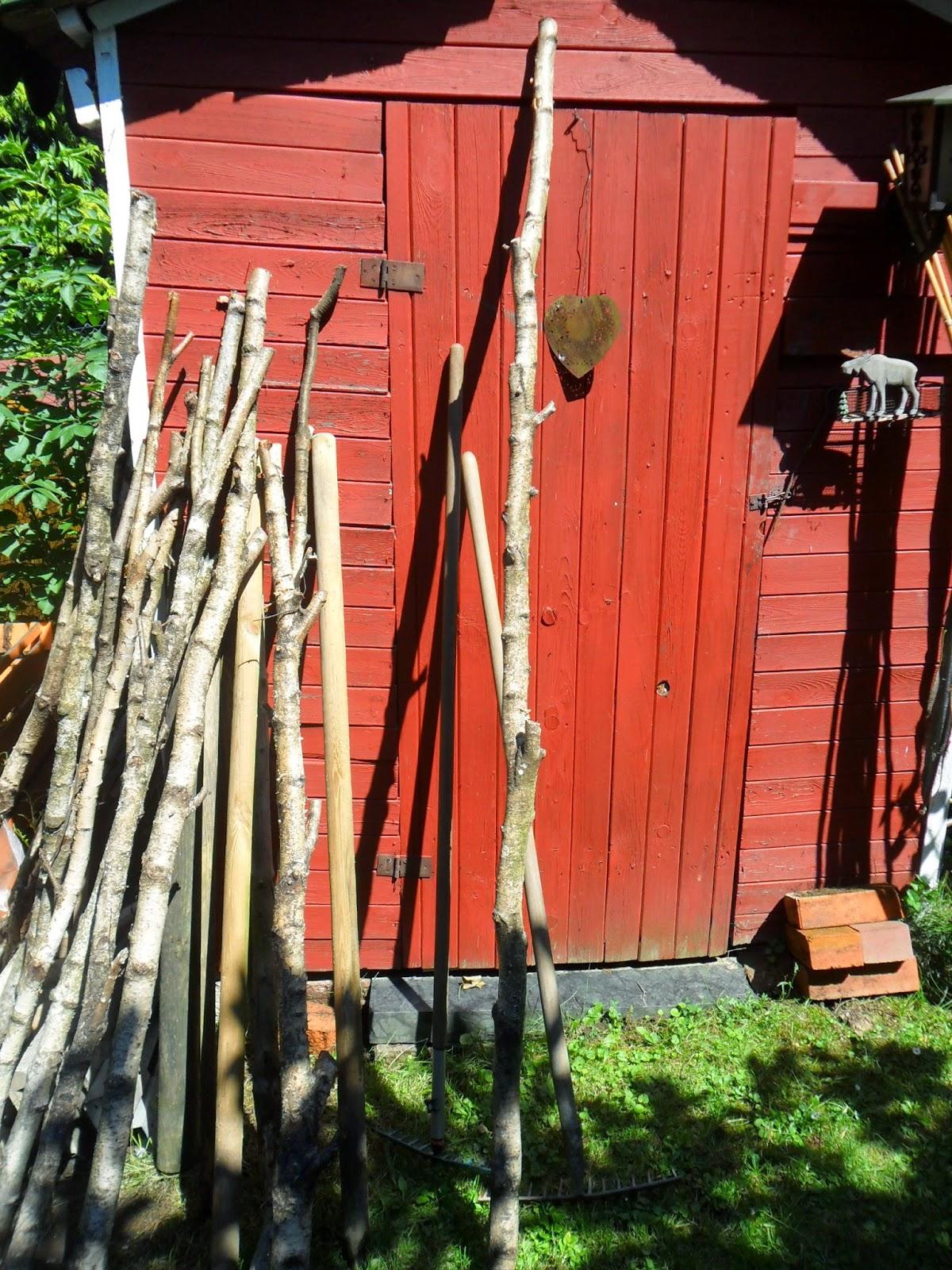 Das Ist Der Rest Von Den Hauberg Birkenstämmen. Vielleicht Findet Sich Noch  Ein Plätzchen In Meinem Garten. Übrigens, Habe Eben Schon Wieder 2 Kilo ...