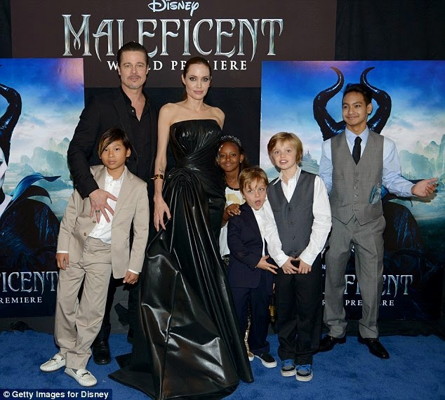 Brad Pitt was punched by a stranger at the premiere of Angelina Jolie's film Maleficent