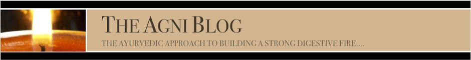 The AGNI Blog