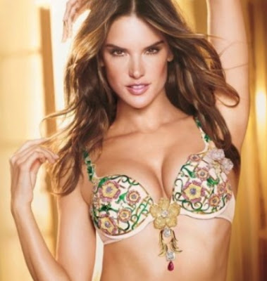 the most expensive bra in the world