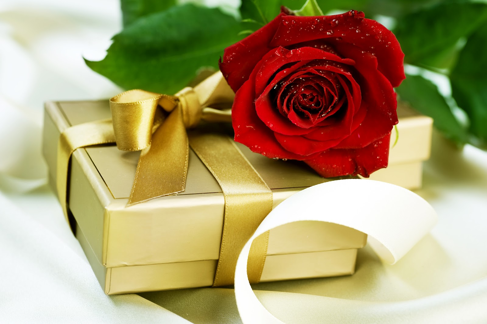 Beautiful Love Gift Wallpaper : Beautiful Flower Wallpapers For You: Gift and Love Flower Wallpaper