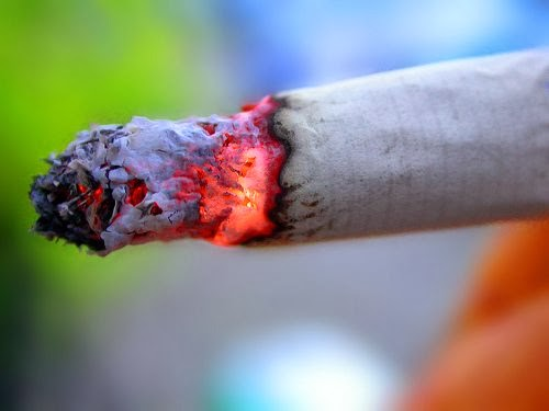 Smoking Effects To Environment