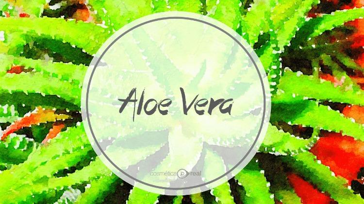 Cosmecéuticos:  Aloe Vera